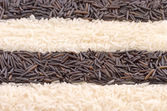 Striped background of black and white rice — Stock Photo