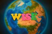 Wise — Stock Photo