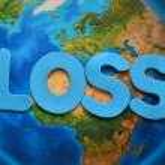 Loss — Stock Photo #54624377