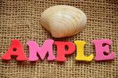 Ample — Stock Photo