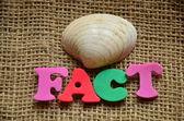 Fact — Stock Photo