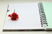 Dried rose on notebook — Stock Photo