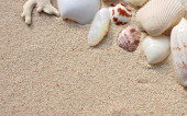 Sandy background with seashells — Stock Photo
