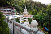 Large stone Buddha statue at Chin Swee Caves Temple  — Stock Photo