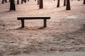 Wood bench at outdoor — Stock Photo
