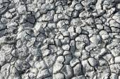Texture of the salt of the earth — Stock Photo
