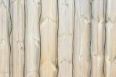 Texture of wood  — Stock fotografie