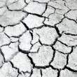 Texture of dry land — Stock Photo #59880061
