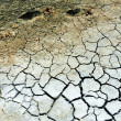 Texture of dry land — Stock Photo #59880099