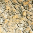 Texture of dry land — Stock Photo #59880123
