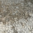 Texture of dry land — Stock Photo #59880131