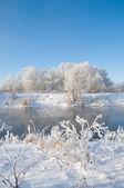 Winter, winter-tide, winter-time — Stock Photo