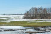 Spring snow last winter — Fotografia Stock