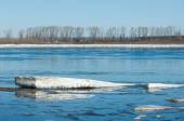 River With Broken Ice. ice hummocks on the river in spring. — Stock Photo