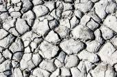Cracked ground, cracked texture — 图库照片