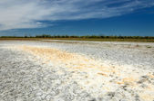 Steppe saline soils. saline  salt  in salt.  steppe  prairie  ve — Stock Photo