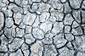 Cracked ground, cracked texture — Stock Photo