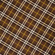 The fabric in the Scottish style. Warm plaid — Stock Photo #73728619