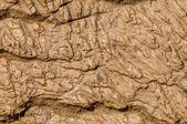 Sludge, silt, clay, mud, ooze, slime — ストック写真