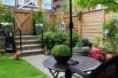 Small garden — Stockfoto