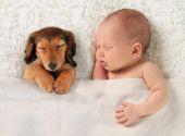 Newborn baby and puppy  — Stock Photo