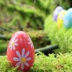 Easter egg  — Stock Photo #65621953