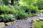 Woodland shade garden path — Stock Photo