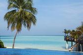 Swimming pool at the luxury resort — Stock Photo