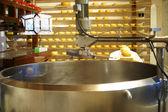 Cheese dairy — Stock Photo