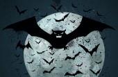 Grunge Halloween bat background — Stock Vector