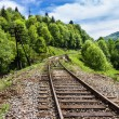 Railway in the mountains — Stock Photo #68585967