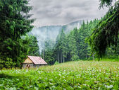 Mountain shelter in Carpathians during inclement weather — Stockfoto