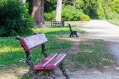 Park alley with benches — Stock Photo