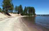 The beach on the lake Kolvitsa — Foto Stock