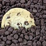 Постер, плакат: Chocolate chip cookies in chocolate chips