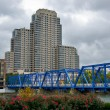 Blue bridge in Grand Rapids — Stock Photo #54768339