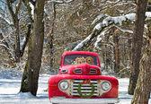 Golden retrievers in Christmas truck — Stock Photo