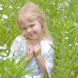 Little blond girl in wild daisies — Stock Photo #63532021