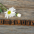 Vintage letterpress type and daisy — Stock Photo #68738095