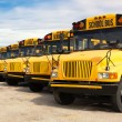 School buses — Stock Photo #52559355
