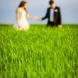 Couple in a green field — Stock Photo #68242445