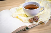Cup of tea on open book — Stock Photo