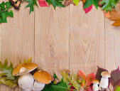 Autumn frame with mushrooms — Stock Photo