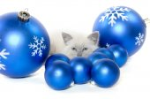 Cute kitten and christmas ornaments — Stockfoto