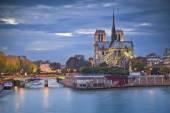 Notre Dame Cathedral, Paris. — Stock Photo