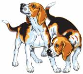 Two beagle hounds — Stock Vector
