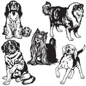 Black and white set with dogs — Stock vektor
