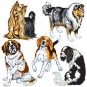 Zestaw z psami — Wektor stockowy