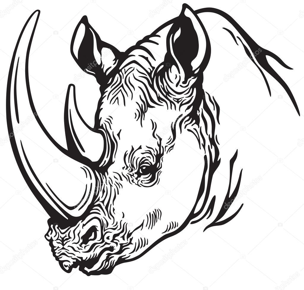 Line Drawing Rhinoceros : Rhinoceros head drawing