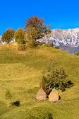 Countrysite in Romania — Stock Photo